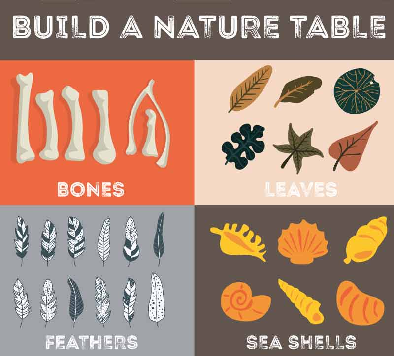 build-a-nature-table
