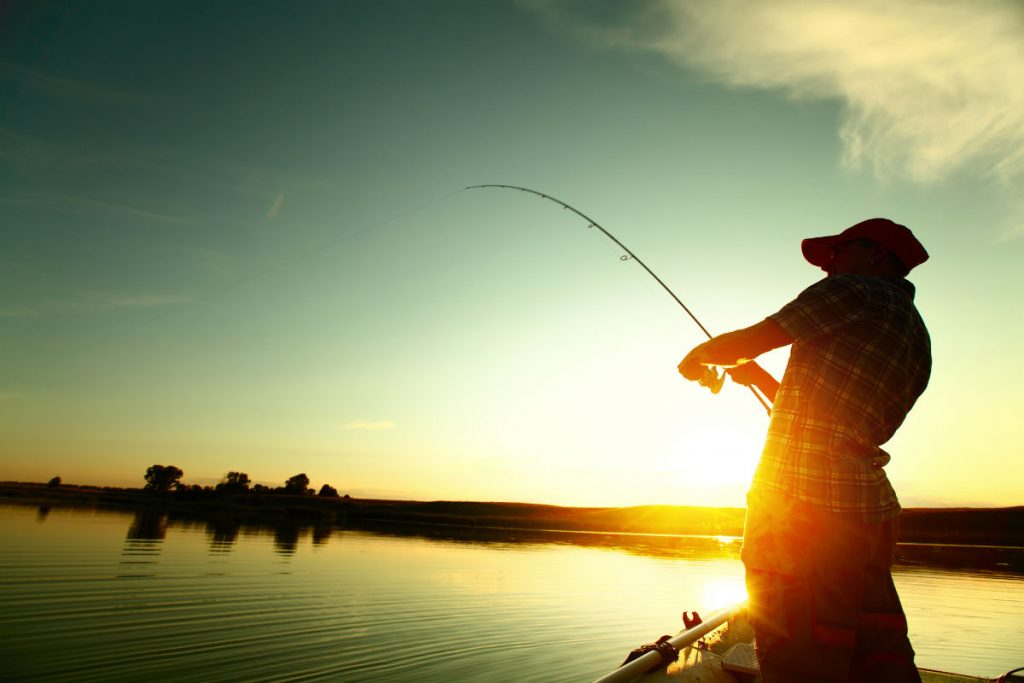 Best Fishing Rods And Pole